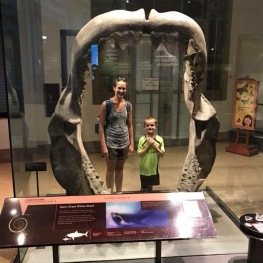 Museum of Natural History